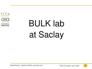 BULK lab  at Saclay