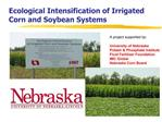 Ecological Intensification of Irrigated Corn and Soybean Systems