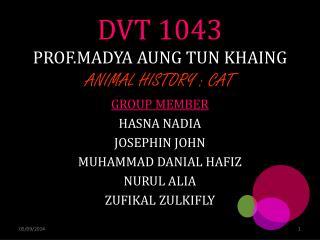 DVT 1043 PROF.MADYA AUNG TUN KHAING