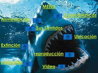 MENU Características  Alimentación  Sus Sentidos Ubicación Extinción reproducción preguntas Video