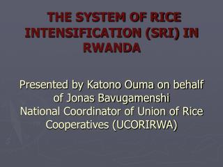 THE SYSTEM OF RICE INTENSIFICATION SRI IN  RWANDA   Presented by Katono Ouma on behalf of Jonas Bavugamenshi National Co