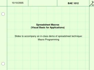 Spreadsheet Macros (Visual Basic for Applications)