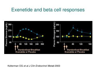 Kolterman OG et al J Clin Endocrinol Metab 2003