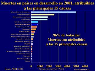 Muertes en países en desarrollo en 2001, atribuibles a las principales 15 causas