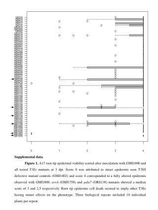 Supplemental data.