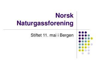 Norsk Naturgassforening