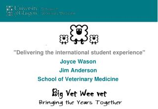 """""""Delivering the international student experience"""""""