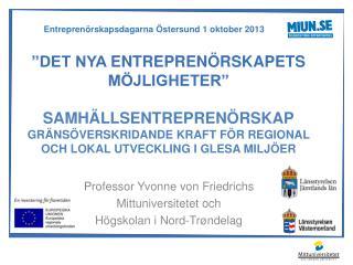 Professor Yvonne von Friedrichs Mittuniversitetet och  Högskolan i Nord- Trøndelag