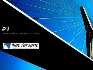 NetVersant Service Offering