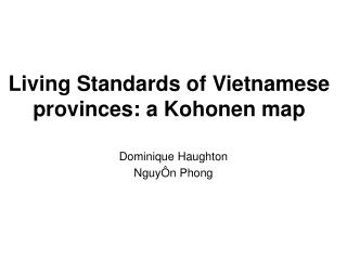 Living Standards of Vietnamese provinces: a Kohonen map