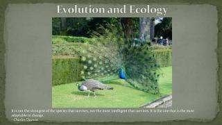 Chapter 3 Evolution, Biodiversity, and Population Ecology