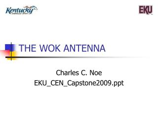 THE WOK ANTENNA