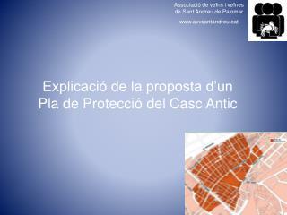 Explicació de la proposta d'un Pla de Protecció del Casc Antic
