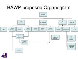 BAWP proposed Organogram