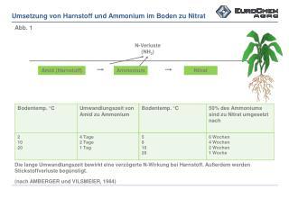 Umsetzung von Harnstoff und  Ammonium im  Boden zu Nitrat