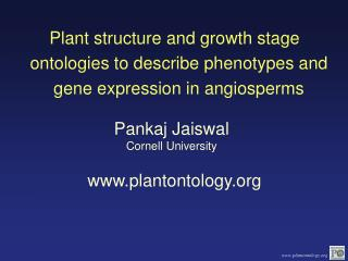 Pankaj Jaiswal Cornell University