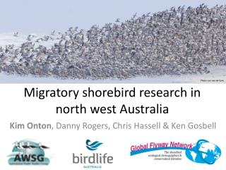 Migratory shorebird research in north west Australia