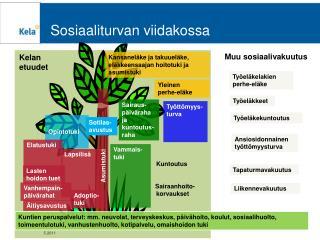 Sosiaaliturvan viidakossa