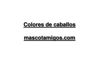 Colores de caballos mascotamigos