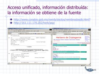 Acceso unificado, información distribuída: la información se obtiene de la fuente