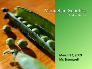 Mendelian  Genetics Dihybrid  Crosses