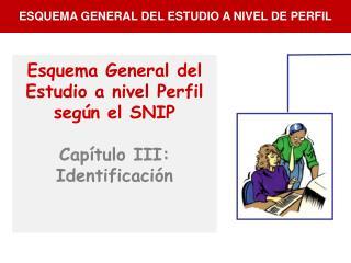 Esquema General del Estudio a nivel Perfil según el SNIP Capítulo III: Identificación