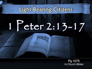 1 Peter 2:13-17