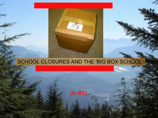 SCHOOL CLOSURES AND THE 'BIG BOX SCHOOL'