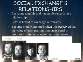SOCIAL EXCHANGE  RELATIONSHIPS