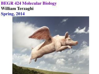 BEGR 424 Molecular Biology William Terzaghi Spring, 2014