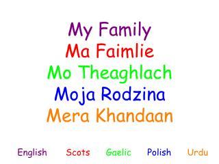 My Family Ma Faimlie Mo Theaghlach Moja Rodzina Mera Khandaan