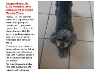 Desaparecido no dia 17/01 na ladeira Santa Clara,próximo ao Parque Moscoso.Vitória