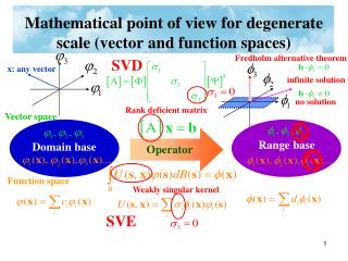 Mathematical point of view for degenerate scale (vector and function spaces)