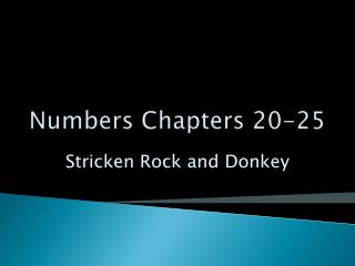 Numbers Chapters 20-25