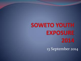 SOWETO YOUTH EXPOSURE  2014