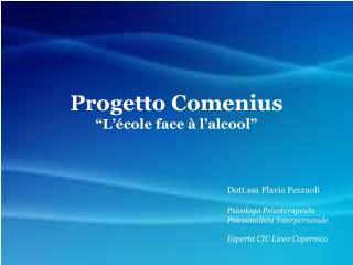 Progetto Comenius �L��cole face � l�alcool�