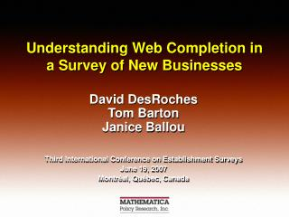 Understanding Web Completion in a Survey of New Businesses