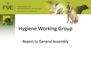 Hygiene Working Group