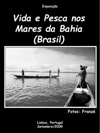 Vida e Pesca nos Mares da Bahia (Brasil)