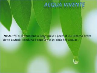 Acqua Vivente