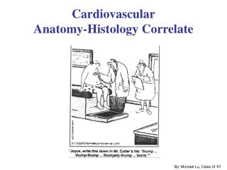 Cardiovascular Anatomy-Histology Correlate