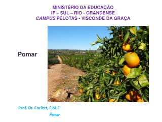 Prof. Dr. Corlett, F.M.F Pomar