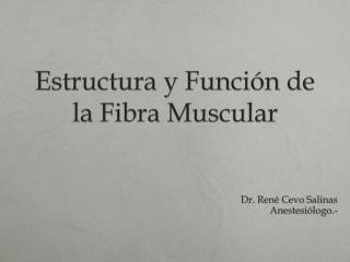 Estructura y Función de la Fibra Muscular
