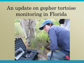 An update on gopher tortoise monitoring in Florida
