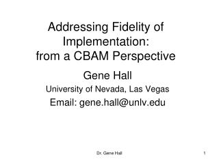 Addressing Fidelity of Implementation: from a CBAM Perspective
