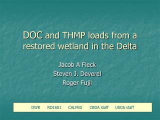 DOC  and THMP loads from a restored wetland in the Delta