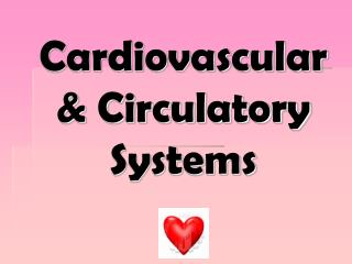 Cardiovascular & Circulatory Systems