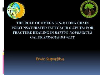 Erwin Saspraditya