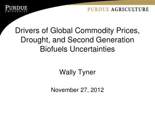 Drivers of Global Commodity Prices, Drought, and Second Generation Biofuels Uncertainties
