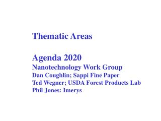 Thematic Areas Agenda 2020 Nanotechnology Work Group Dan Coughlin; Sappi Fine Paper